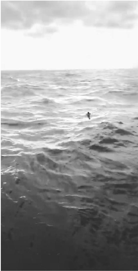 遇险船员被救起的过程。 黄道福提供的视频截图