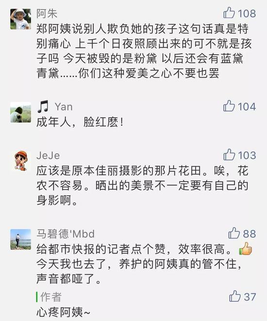 今天一早,快报记者再次赶到了杭州滨江江边公园。