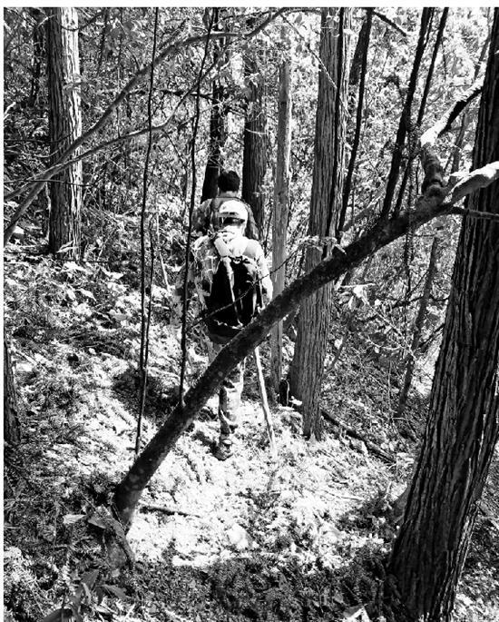 考察队在山间跋涉。