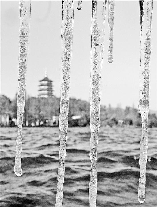 昨天,西湖长桥挂起一排冰凌。记者 林云龙 摄