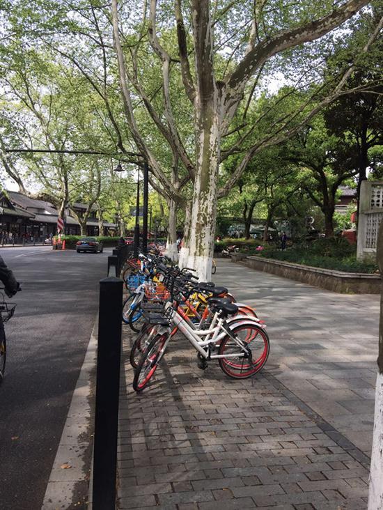 即使无人管理,单车停放也比较规整,骑车人的素质正在提升