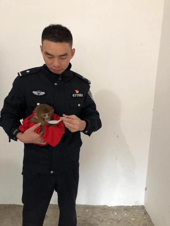 民警与小猕猴
