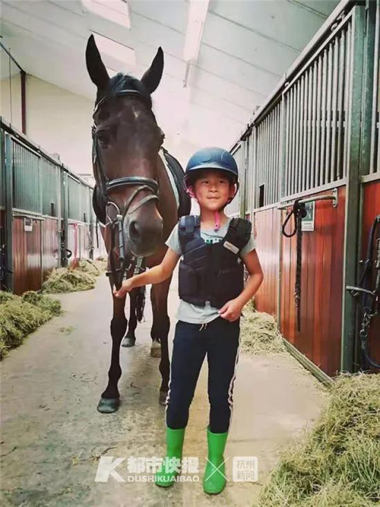 小屠宣很喜欢马