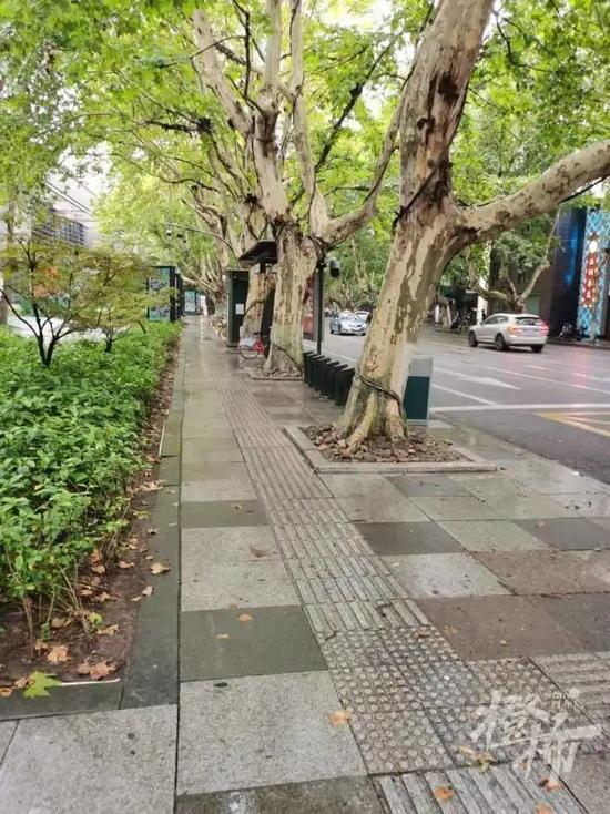 杭州40条人行道年底前改造好 首批14条道路已开工