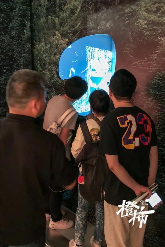 """浙江展览馆,观众透过""""树洞""""装置,观看这两段视频。首席记者 陈中秋 摄"""