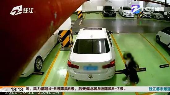 杭州女租客偷偷砸车向楼下泼狗屎 业主忍不了想卖房,纳拉辛的学识之书