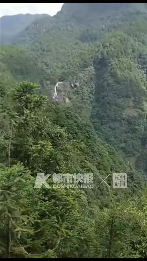 派出无人机侦察,因为树林遮挡视线,无法找到目标。