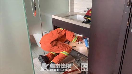 杭州一酒店来了不速之客 消防员差点被它的屁熏晕