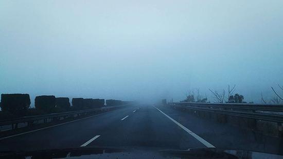 浙江台州附近的高速,因大雾,车辆通行减少。俞金旻 图