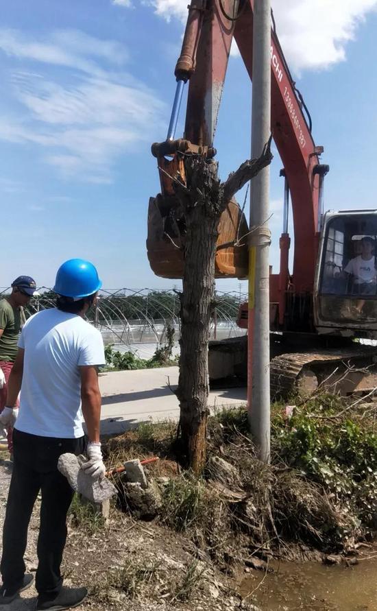 凝心聚力打响灾后重建战役 三门县投入灾后自救工作