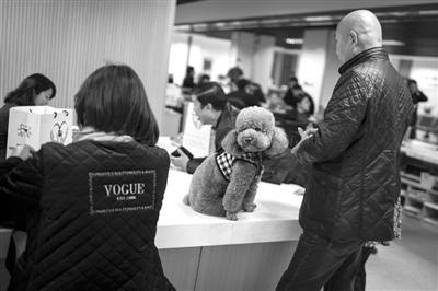 昨天上午11点,江干区行政服务中心,大批市民前来办理养犬许可证。