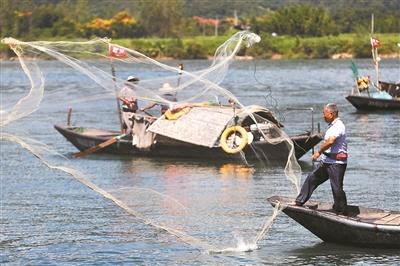 富阳区场口镇东梓关村码头上,渔民们正在富春江中捕鱼