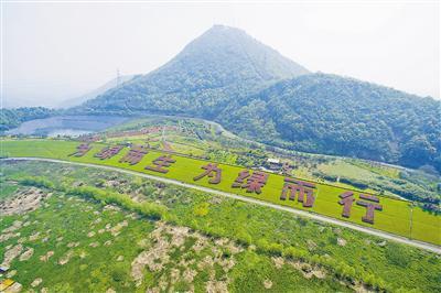 图为:天子岭生态园区。官方供图