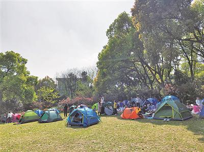 临平公园游客如织