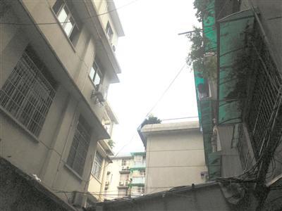 青春坊小区(图右)和人寿培训楼(图左)只有一墙之隔 记者 朱玫 摄