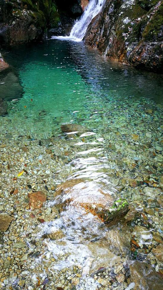 《箬寮山泉》有耳朵摄于丽水