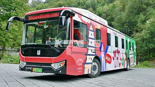 真浪漫 杭州西湖边一辆特殊的婚车引沿途游客感叹