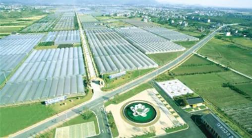 衢江这个示范园成功跻身国家级
