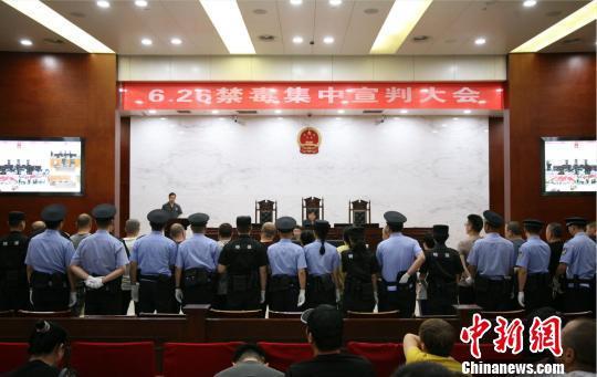 杭州中院集中宣判涉毒案件。 郭其钰 摄