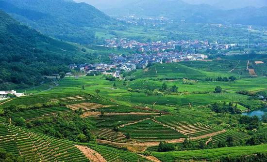 杭58个农村社区获省级农村引领型社区称号 有你家吗