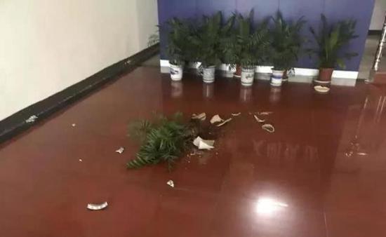 绍兴1女子大闹执法队 打碎大厅花盆损坏执法中队大门