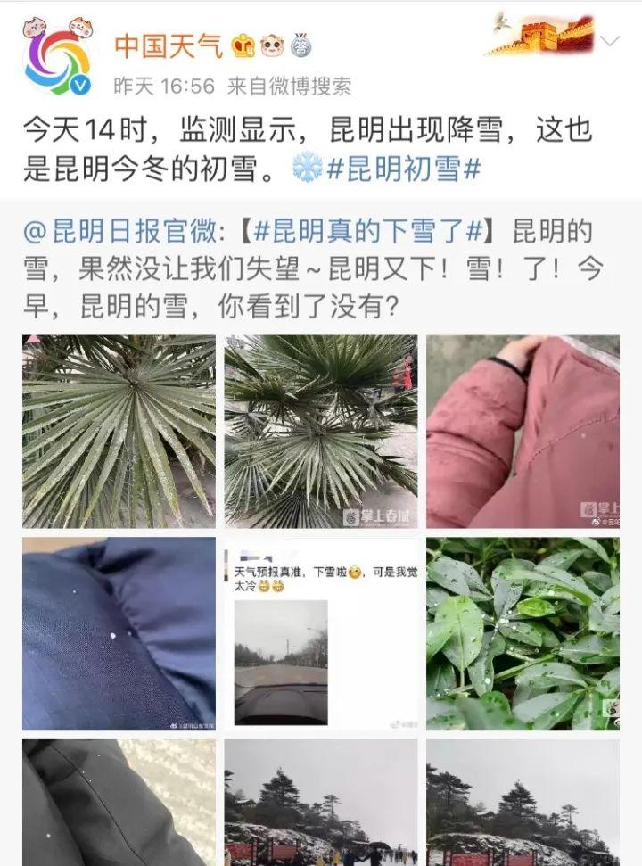 杭州最近的的天气像是开挂了 四九天里气温冲20℃