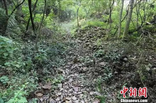图为:竹家岭窑址全景 黄岩区委宣传部提供