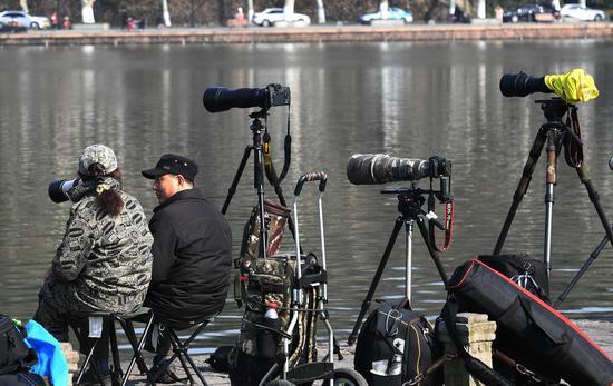 图为:两位摄影爱好者在西湖边聊天。王刚 摄