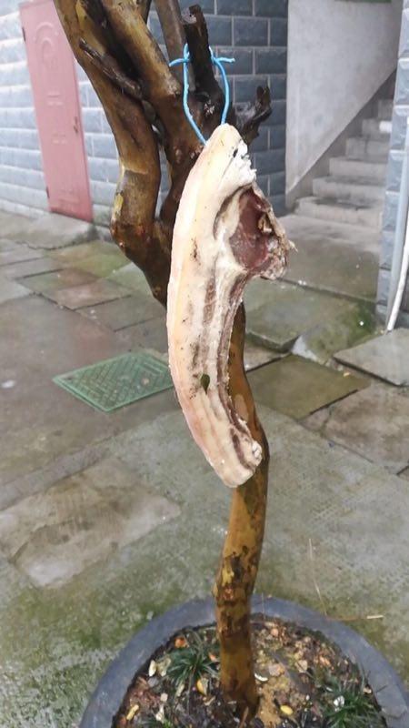 (图:谁家的猪肉吹下来了?)