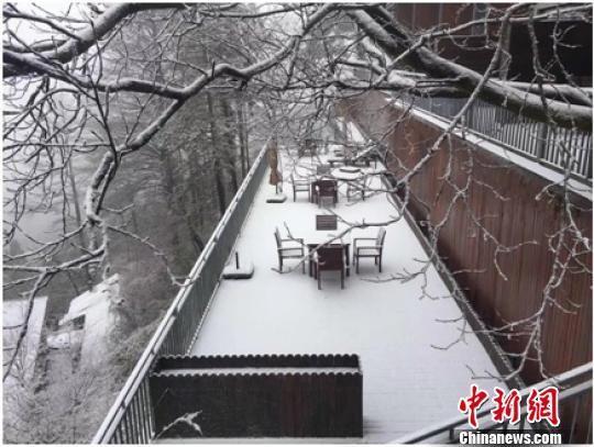 德清莫干山雪景 刘建林 摄