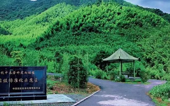 松阳县西屏街道明清文化街区