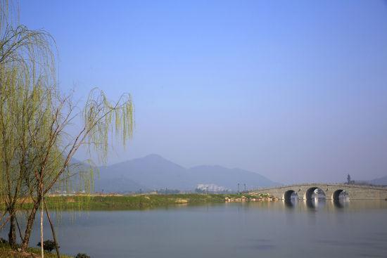 图为:杭州湘湖柳树变绿。 颜石斌(通讯员) 摄