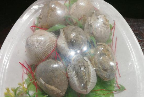 """由贝壳化石拼集而成的""""化石菜""""价值很高 三门县委宣传部提供"""