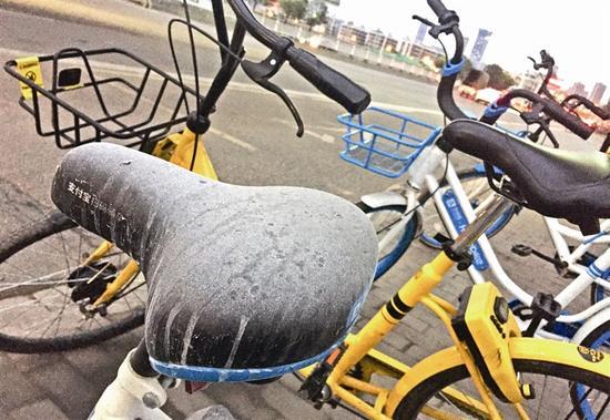昨天下午,在市区牛山南路附近,不少共享单车的坐垫上积满了厚厚的灰尘 温都记者 姚卡/摄