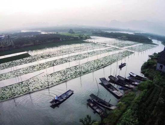 春节温州市区水上游览攻略出炉 感受不一样的年味