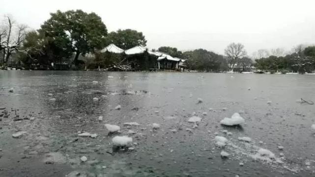 昨天,杭州三潭印月小瀛洲岛内的西湖水域,近3万平方米结冰。江志清/摄