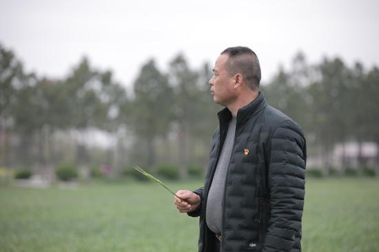 """余新镇乡贤陈强根:用一支""""机械化部队""""打出农业新时代"""
