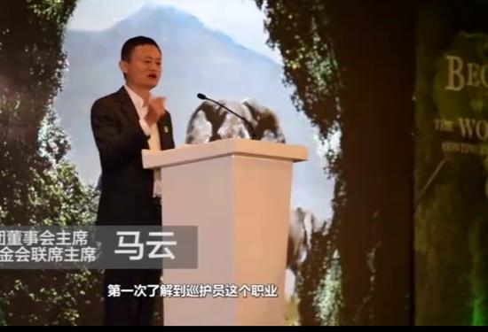 中国人要保护非洲大象 马云:我们只有一个地球