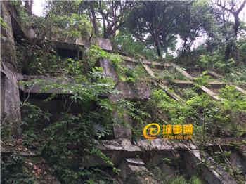 杭州男子吴山上坠崖身亡 妻子带着被子赶来边走边哭