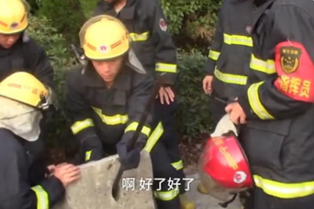 宁波1女子手机掉井 报火警骗来20消防员