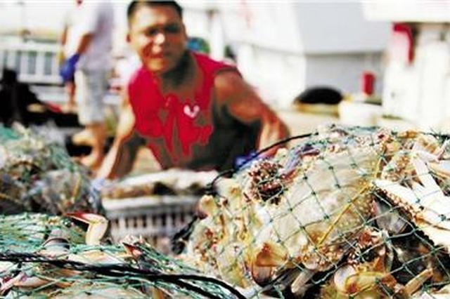浙江鱼贩转战线上销售 至少一半摊主有自己的淘宝店