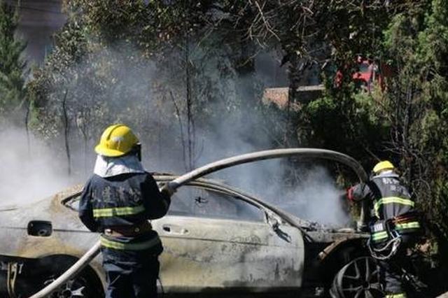 杭州1奔驰车为避行人撞大树 翻沟后自燃烧成空架