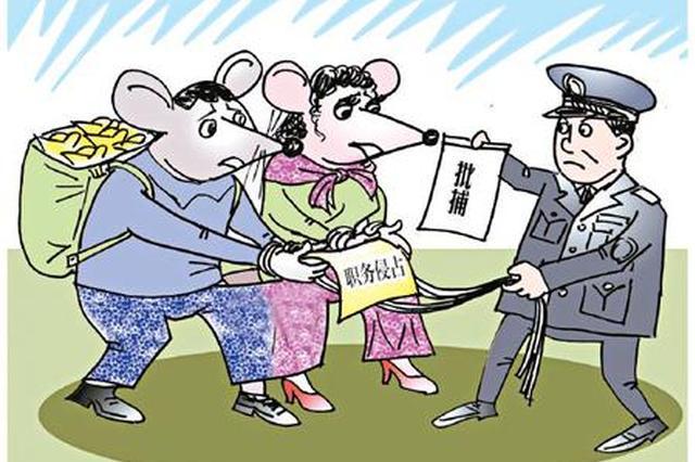 原浙江温州永嘉县象棋协会法定代表人因职务侵占获刑