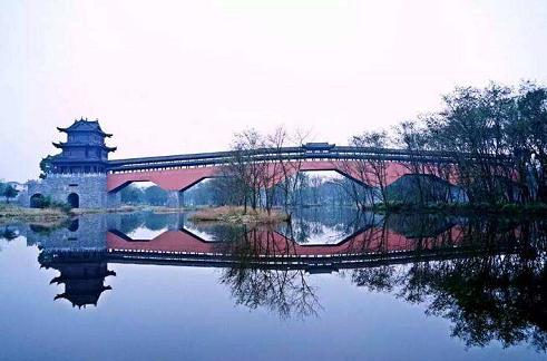 ima九龙湿地公园(摘自网络)