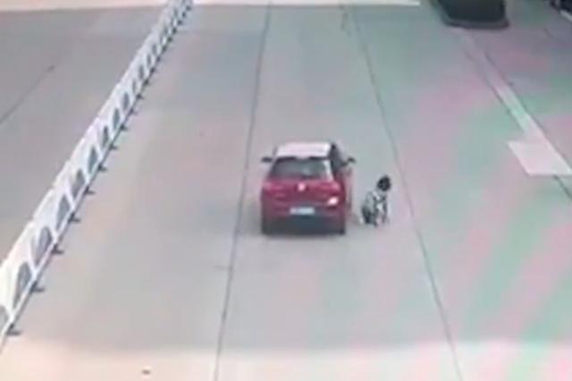 浙江骑车女生被撞飞到车顶 遭顶行数十米后跳下车