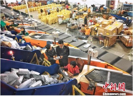 """图为:杭州海关驻邮局办事处关员正在监管""""双十一""""期间邮件 朱菁 摄"""