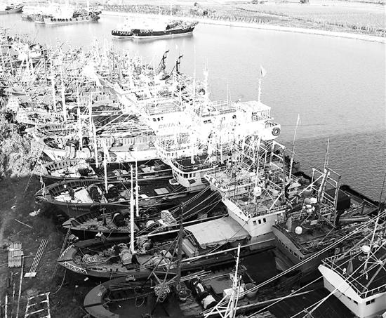 """台风""""安比""""逼近浙江沿海,渔船全部回港避风。"""
