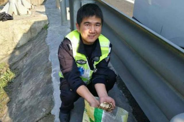 丽水1皮卡车爆胎6万硬币撒高速 交警捡钱捡到手软