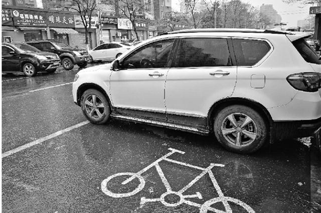 杭州一断头路成停车场 每天违停的车约有350辆