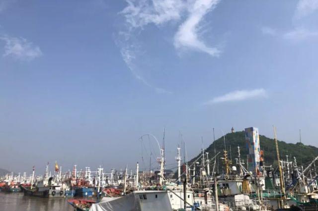 东海海域全面休渔 浙江人爱吃的几种海鲜将受影响